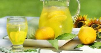 Lemon-Diet