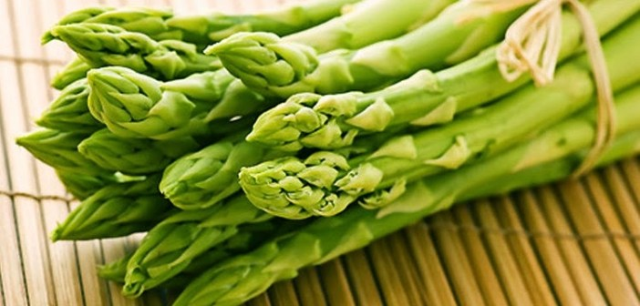 الهيلون - فوائد نبات الهيلون الصحية والطبية
