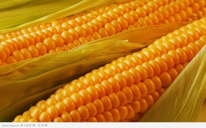 فوائد الذرة