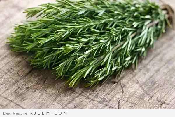 15 فائده صحية لعشبة الروزماري