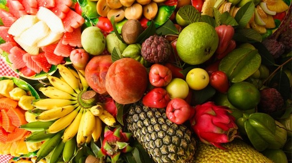 desaru-fruit-farm-02