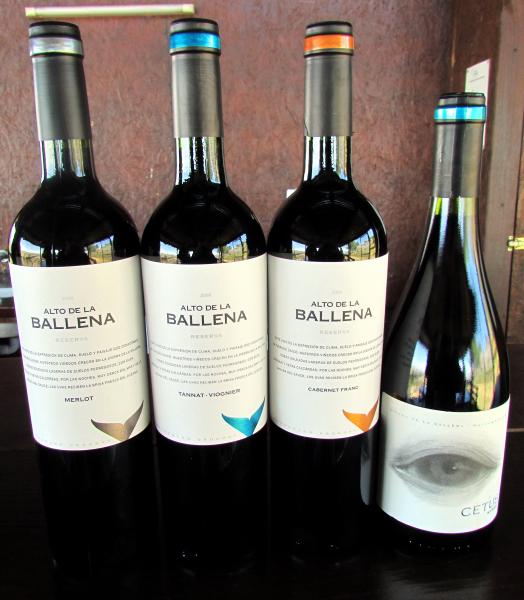 Alto de la Ballena wines