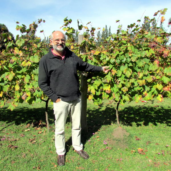 Francisco Carrau with experimental Tannat vines