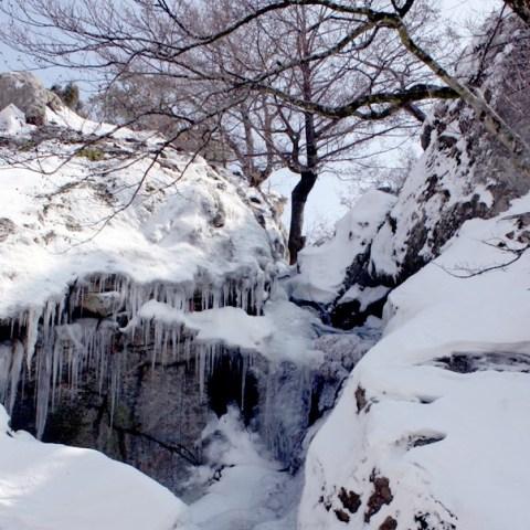 massane cascade
