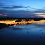 Wild Pantanal!