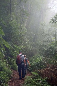 Trekking in the clouds to Wae Rebo
