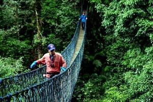 Cikaniki canopy walk in Gunung Halimun Salak National Park