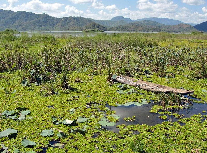 Lake Lebo near Taliwang, west Sumbawa