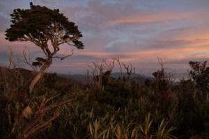 Mount Kemiri sunrise, Sumatra, Indonesia