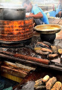 Cooking trapang, the traditional food of the Spermonde Islanders