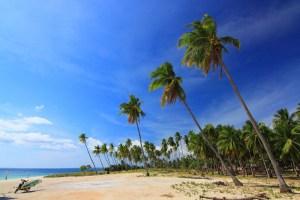 Gorgeous Nemberala Beach, Rote Island