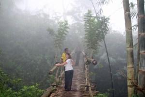 Bamboo bridge on the Wae Rebo trail, Flores