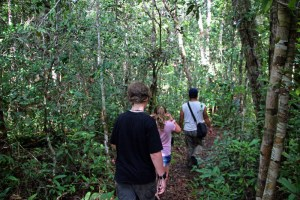 Kutai NP is networked with hiking trails