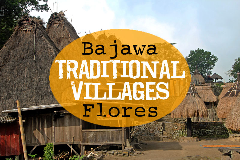 Bajawa Traditional Villages, Flores