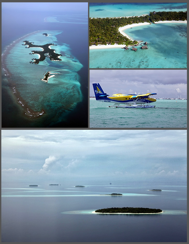 Roberto Cavalli - Maldives