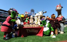 phanatic-birthday-tastykake-cake-phillies-680uw