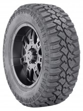 Mickey Thompson's Deegan 38 Tire