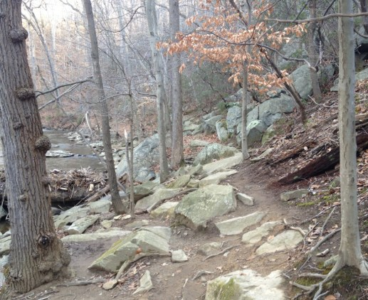 Valley_Trail_Rock_Creek_Park3