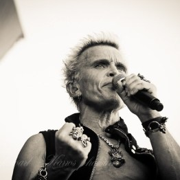 billy-idol-srf-14-8490(1)