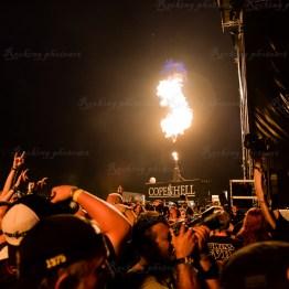 festivallife cphl 16-3950