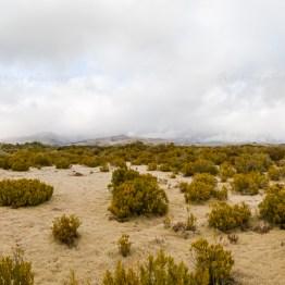 wilderness scientific reserve