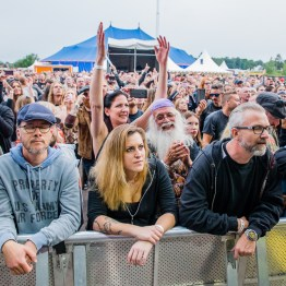 festivallife rockit 17-609822