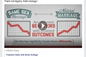 Gay Marriage vs Natural Marriage = Biology Not Bigotry