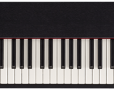 F-20 Digital Piano: Top Quality - Great Price