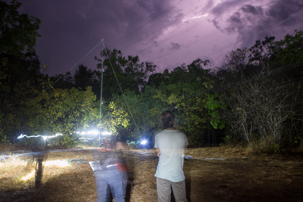 Setting up a mist net at Wasgamua National Park, while enjoying the lightning storm that has passed in the background. Credit: Vincent Luk
