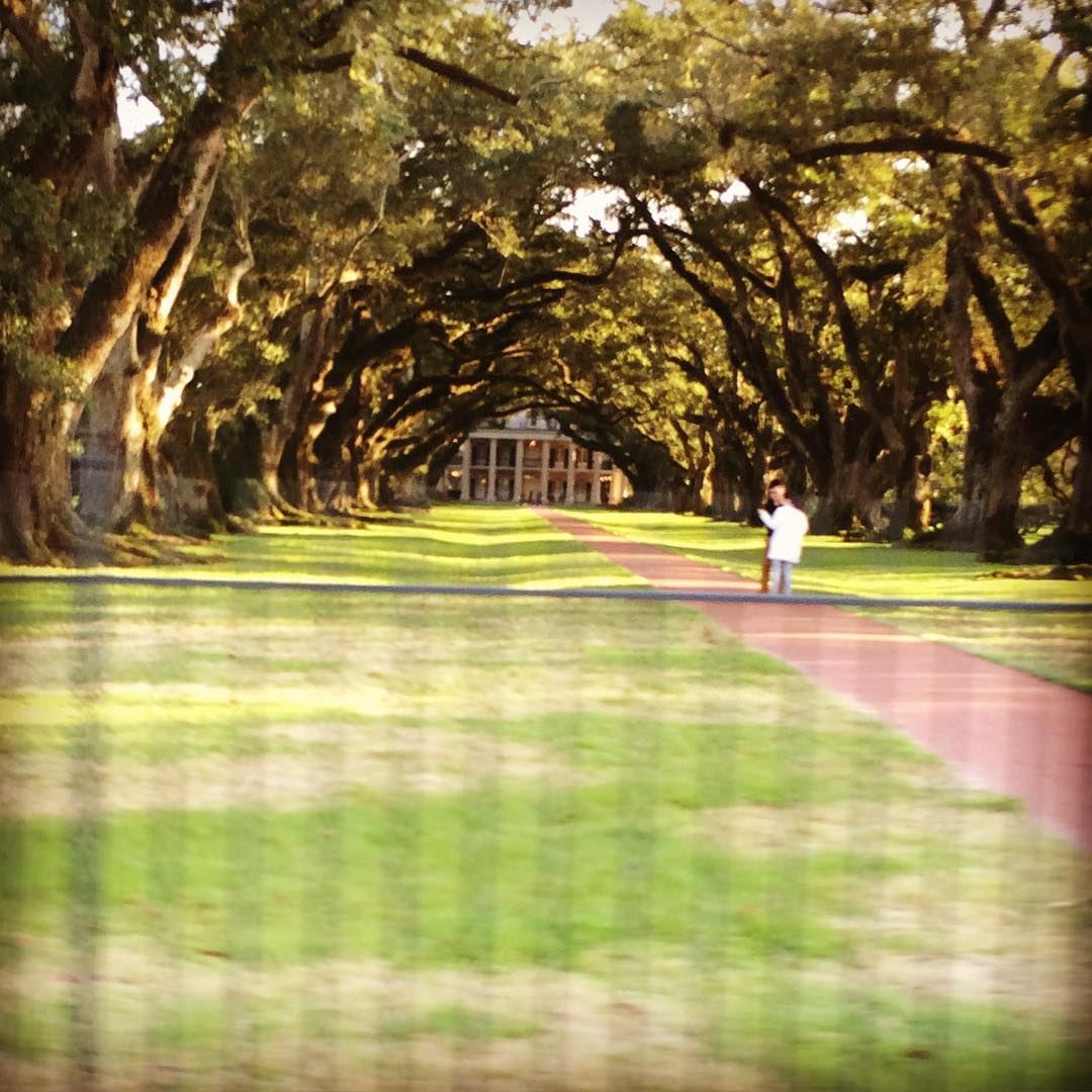 Oak alley plantation - go to Laura plantation, they will talk also about all the slavery victims #Nola #usa #history