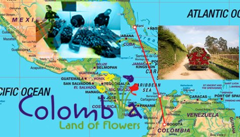 colombiaflowershdr_500x