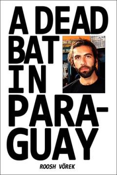 A Dead Bat in Paraguay by Roosh Vorek