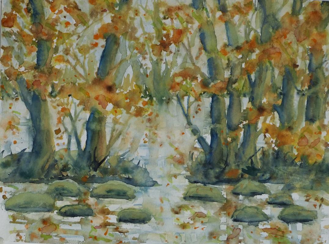 Schwentinebäume im Herbst