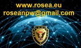 lettrage du logo globe teintées de rose 2