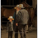 Amish boy with Amish elders at horse auction
