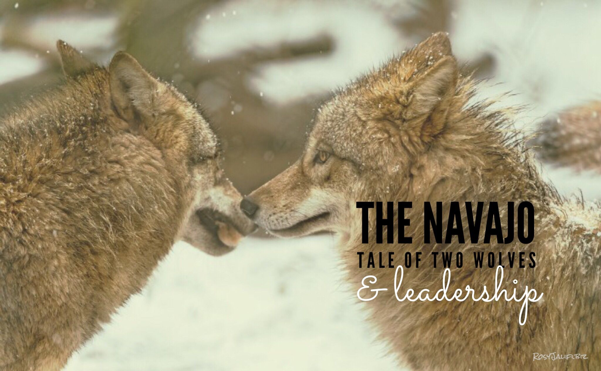 A Navajo Story That Helps You Look at Your Leadership Style