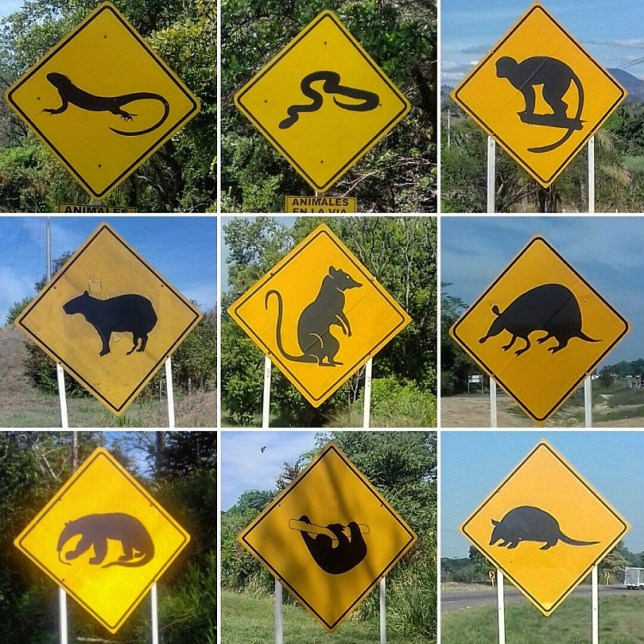 Colombian road signs