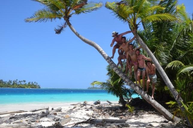 Friends in a palm tree