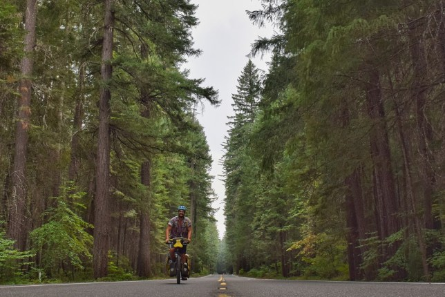 Riding Oregon forest