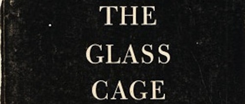 GlassCageBook