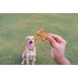 Small Crop Of Dog Training Treats
