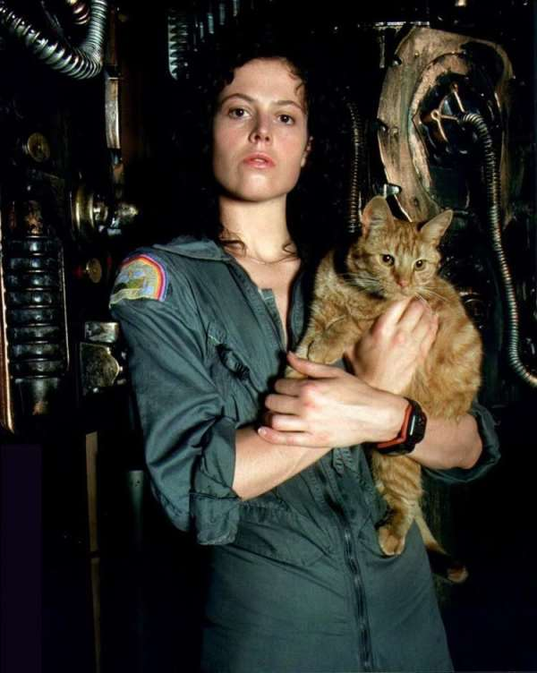 Alien - Ripley and Jones the Cat