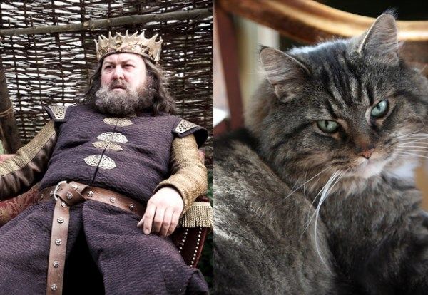 Game of Thrones Characters as Cats