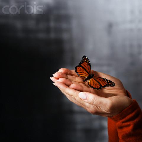 © Copyright 2007 Corbis Corporation