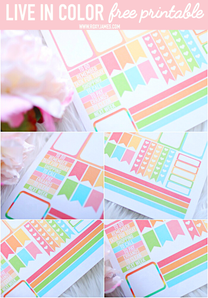live in color planner freebie