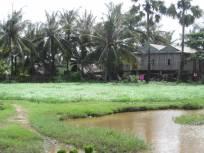 Kampot060