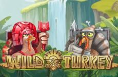 wild-turkey-slot