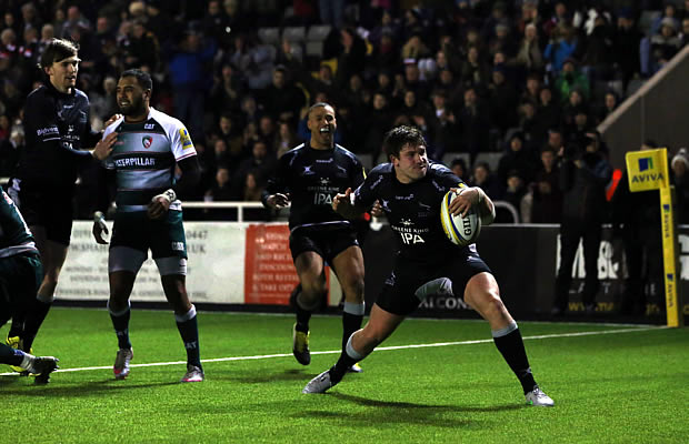 Adam Powell celebrates a try for Newcastle Falcons