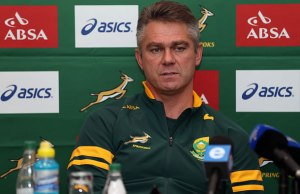Heyneke Meyer has been linked to Bath
