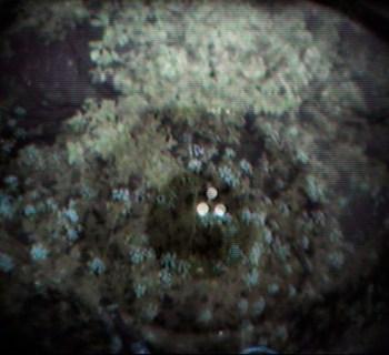mobile-eye-footage01-copy3
